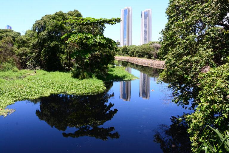 Assembleia Legislativa conduzirá debate sobre soluções para o problema da poluição do Rio Jaguaribe