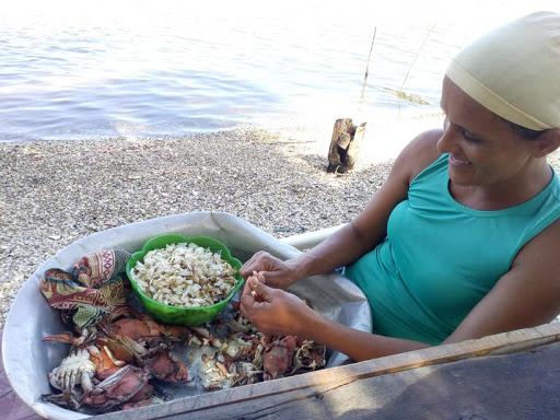 Comissão aprova política de desenvolvimento sustentável da pesca e das atividades das mulheres marisqueiras